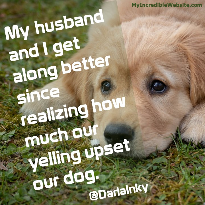 My husband and I get along better since realizing how much our yelling upset our dog. — @DarlaInky tweet